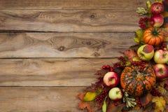 土气秋天贺卡背景用南瓜,红色叶子,苹果,荚莲属的植物莓果 免版税库存照片