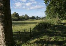 土气篱芭通过绿色乡下, Usk,威尔士 免版税库存图片