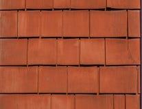 土气红色被绘的雪松盖背景纹理 免版税库存图片