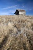 土气谷仓和流草。 免版税库存图片