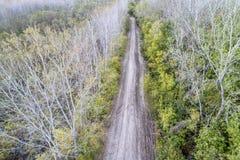 土泥泞的路在岸边的森林里 图库摄影