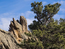 土狼面孔岩石 免版税库存图片