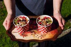 土耳其传统点心Ashure诺亚` s布丁服务与盘子 免版税库存图片