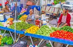 土耳其农夫,安塔利亚新鲜蔬菜  免版税库存照片
