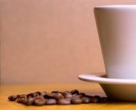 土耳其咖啡杯子和种子 免版税库存照片