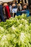土耳其市场 库存照片