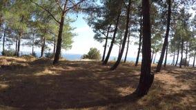土耳其战士坟园和海景从Gallipoli conbayiri小山 关于253K土耳其语soldie 股票录像