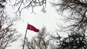 土耳其旗子在一多雪的天 影视素材