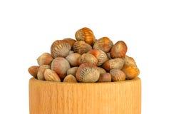 土耳其榛树榛子坚果  榛子坚果的概念  免版税库存照片