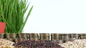 土耳其沙文主义情绪与堆金钱硬币和堆麦子 股票录像