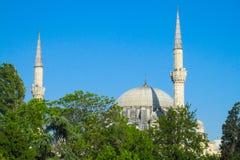土耳其清真寺 库存图片