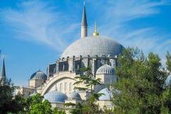 土耳其清真寺 免版税库存图片
