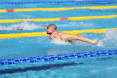 土耳其游泳冠军 库存照片
