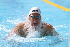 土耳其游泳冠军 免版税库存照片