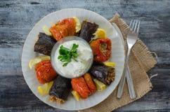 土耳其烹调- DOLMA -自创被充塞的干茄子和 免版税库存图片