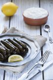 土耳其的dolmades 图库摄影