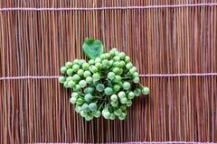 土耳其莓果与空间的茄属torvum 库存照片