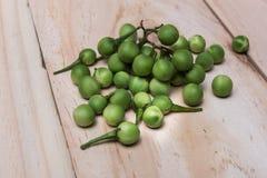 土耳其莓果茄属torvum Sw 在一个木地板上 库存照片