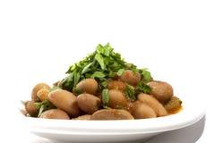 土耳其起始者:在白色板材的豆 免版税库存图片