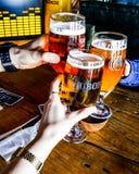土耳其,伊斯坦布尔- 2016年12月29日:与朋友的Tuborg啤酒 欢呼 库存图片