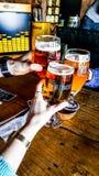 土耳其,伊斯坦布尔- 2016年12月29日:与朋友的Tuborg啤酒 欢呼 免版税库存照片