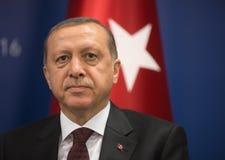 土耳其总统Recep Tayyip埃尔多安 库存照片