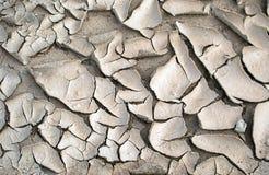 黏土裂缝 库存图片