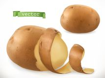 土豆削皮 卷毛 3d图标向量 向量例证