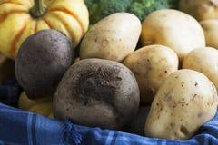 土豆和甜菜 免版税库存照片