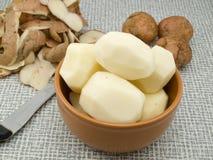 土豆处理sedums 免版税库存照片