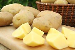 土豆年轻人 免版税图库摄影