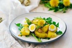 土豆沙拉用蒲公英 图库摄影