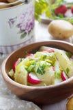 土豆沙拉 库存照片