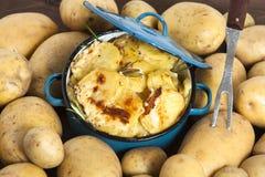 土豆焦干酪 库存图片