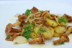土豆用黄蘑菇蘑菇 库存照片