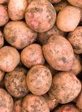 土豆肿胀蔬菜 免版税库存图片
