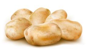 土豆肿胀 皇族释放例证