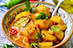 年轻土豆蔬菜炖肉 免版税库存照片
