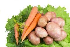 土豆,红萝卜,在白色背景的蔬菜沙拉。 免版税库存图片