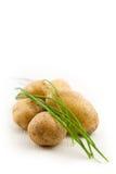 土豆 免版税图库摄影