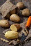 土豆 免版税库存图片