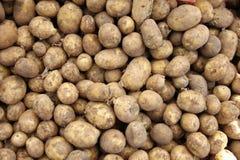 土豆 库存图片