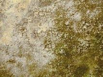 土质的背景 库存图片