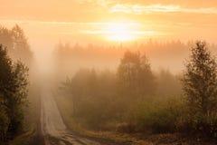 土路和大雾日出 免版税库存照片