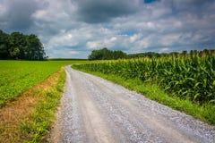 土路和麦地在农村卡洛尔县,马里兰 库存照片