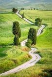 土路和绿色领域在托斯卡纳 免版税库存图片
