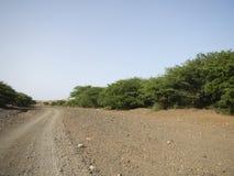 土路在一片石沙漠 库存照片