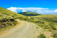 土路在山斑马国家公园,南非 库存照片