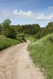 土路在森林里 免版税图库摄影