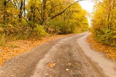 土路在秋天 库存照片